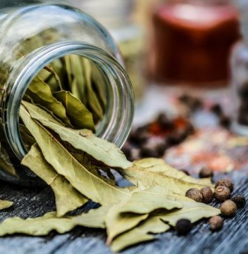 What Does A Naturopathic Doctor Do