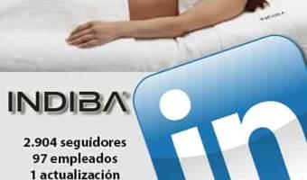 infografia indiba Linkedin community internet the social media company community management
