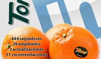 infografia naranjas torres Linkedin community internet the social media company community management