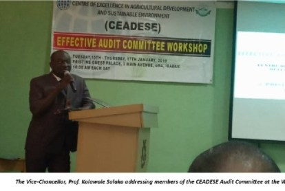 The Vice-Chancellor, Professor Kolawole Salako addressing members of the CEADESE Audit Committee at the Workshop