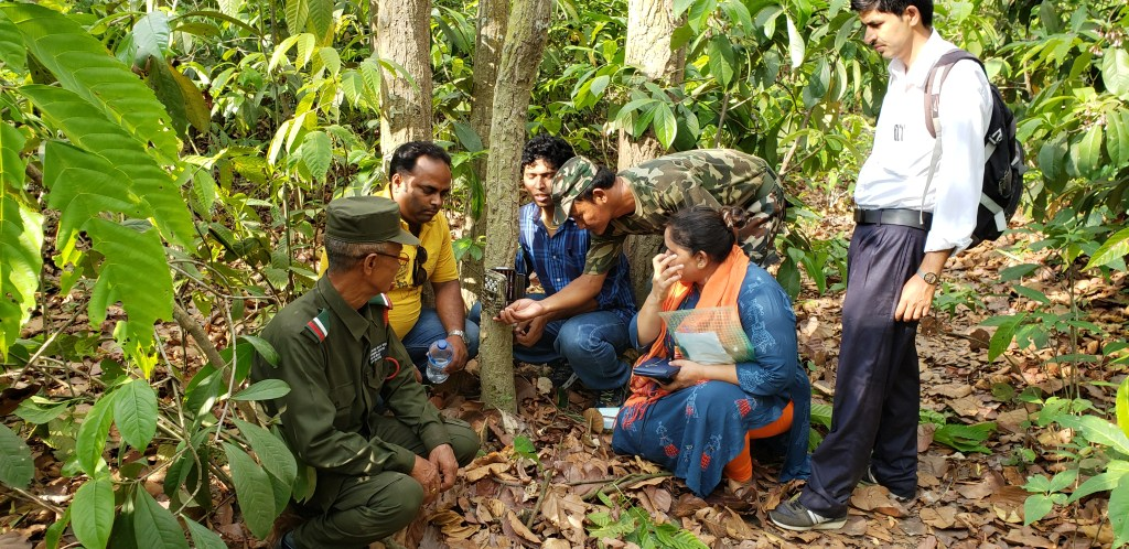 Group of trainees in Nepal at wildlife training session in forest crouching down as they attach a camera trap to a tree