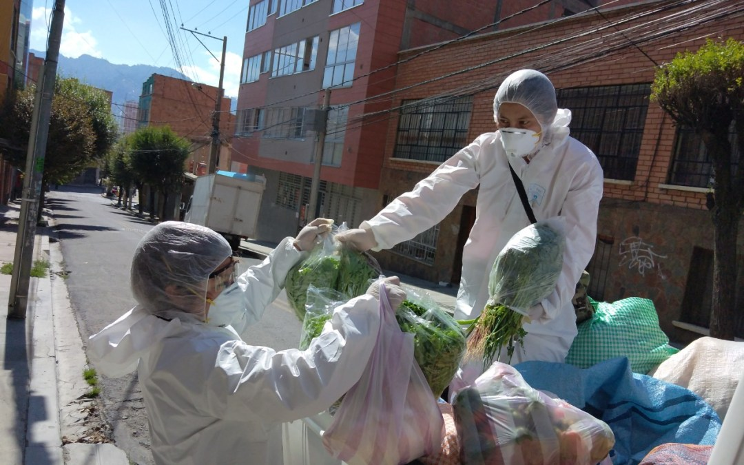 Female farmers and entrepreneurs provide diverse food baskets for delivery around La Paz, Bolivia