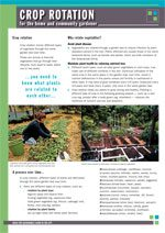 crop-rotation-cover