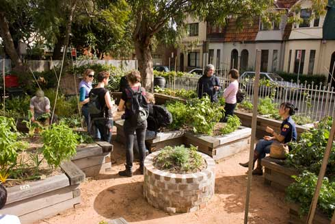The compactness and productivity of Newtown Community Garden intrigued visitors.