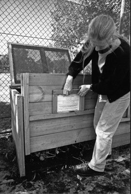 A well made open bay compost with removable front panel and hinged, mesh lid. The lid allows the entry of water and air necessary to the composting process. The bin is one of a connected series of three open bays that excluded rodents by denying them entry points, and was made of timber.