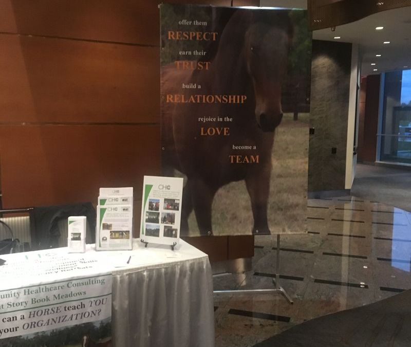 Community Healthcare Consulting @ Ontario Community Support Association's 2018 Conference