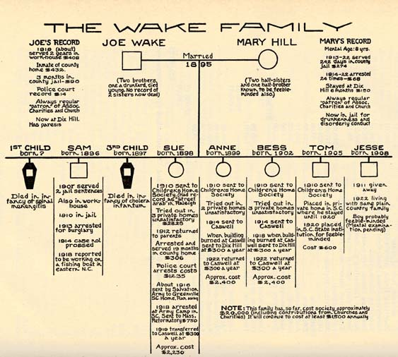 """A genealogical tree for """"The Wake Family"""" that details how problematic every member of the family is. This family tree and its details were used to justify eugenics."""