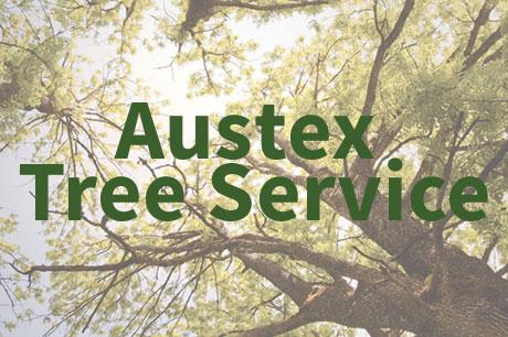 AustexTreeService