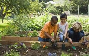 Children gardening b