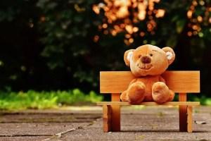 brown teddy bear on bench