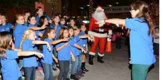Holiday Lights for the Animals: A festive time at the Soffer & Fine's Adoption Center