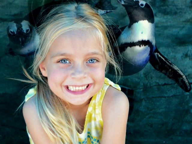 Seaquarium educational programs now available for booking online