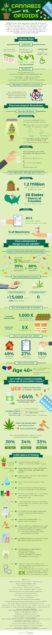 ApolloCannabis_Infographic-min