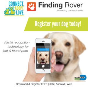 Finding Rover