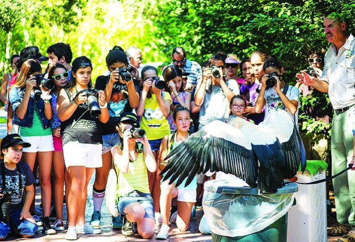 Amerant Bank opens annual Zoolens photography contest for students
