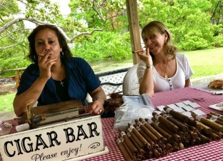 The Barnacle splashes into summer with family events
