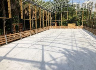 Jungle Island glides into 2020 with outdoor ice skating rink