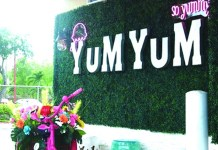 Business Spotlight: YUM YUM Miami