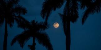 Super full moon viewing and sound event at Deering Estate, Apr. 26