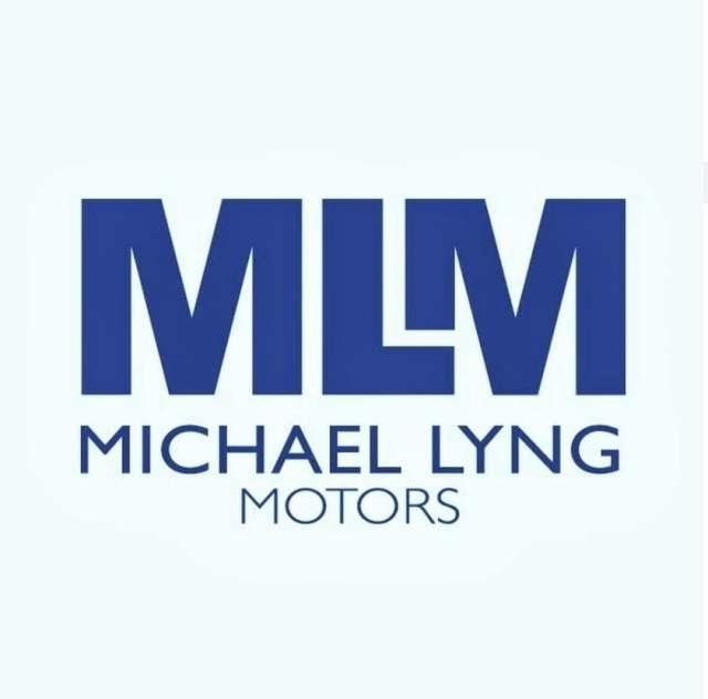 MLM 1
