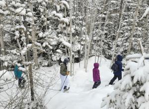 people snowshoeing