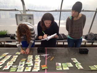 Students examine seeds and take notes.