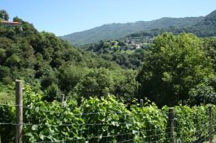 Descent into the Breggia Valley
