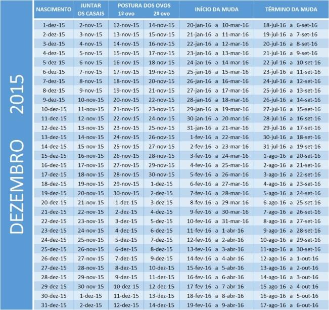 Tabela de dez 2015