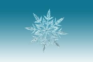 El método snowflake para escribir novelas
