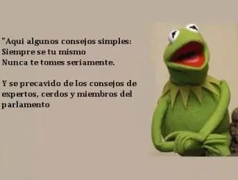 Los 10 Mejores Memes De La Rana Rene Comofriki