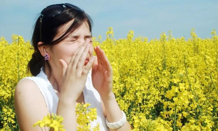 Al llegar la primavera comienzan las alergias al polen por lo que hay que cuidarse y tomar precauciones