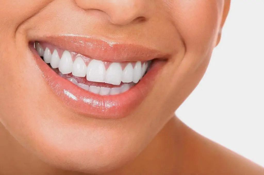 Cules son las funciones principales de la boca