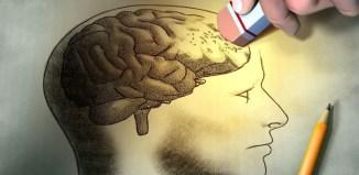 Un problema en las funciones ejecutivas implica un daño o déficit en el lóbulo prefrontal del cerebro