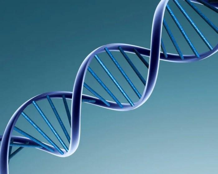 La predisposicion genetica es un factor fundamental para padecer la enfermedad de lupus