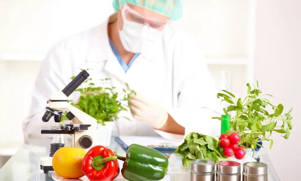 Qu es la qu mica y cu les son sus campos principales for La quimica de la cocina