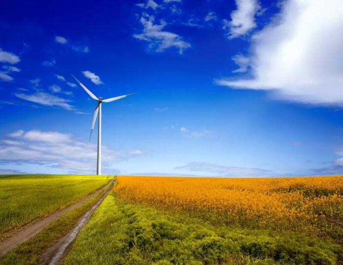 Debemos utilizar mas las energias renovables para contribuir a la reduccion del dioxido de carbono en la atmosfera