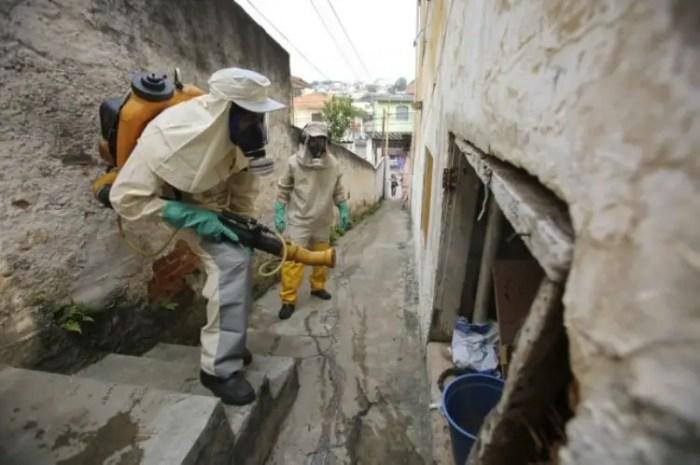 el zika en decadencia de casos