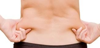 lipidos peso corporal