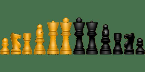 Cómo jugar ajedrez 2