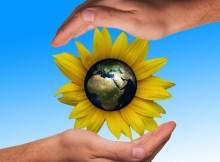 Cómo ser amigable con el ambiente