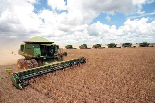 colheita-de-soja-em-sapezal-12-01-09