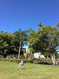 Parque Villa-Lobos, Passeio de Bicicleta, Bike, São Paulo - Nathalia Molina @ComoViaja (6)