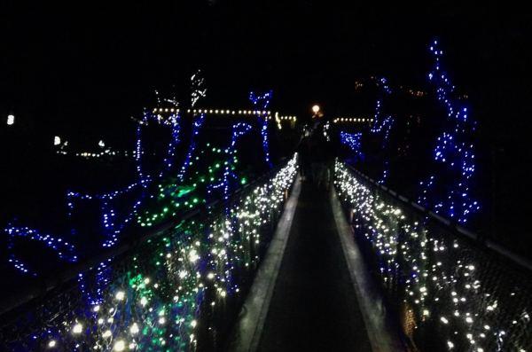luzes-de-natal-em-vancouver-no-canada-capilano-suspension-bridge-no-canyon-of-lights-foto-nathalia-molina-comoviaja