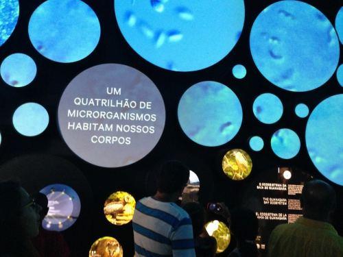 Museu do Amanhã, Terra, Cubo Vida, Rio de Janeiro, Praça Mauá - Foto Nathalia Molina @ComoViaja (11) (1024x768)