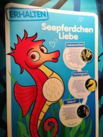 SeaLife Munique Aquario Alemanha Viagem - Foto Nathalia Molina @ComoViaja (2)