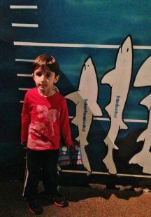 SeaLife Munique Criancas Alemanha Viagem Aquario - Foto Nathalia Molina @ComoViaja (6)