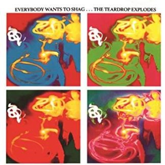 The Teardrop Explodes – Everybody Wants To Shag
