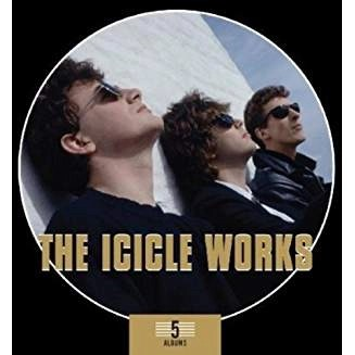 The Icicle Works – 5 Albums (5 CDs) (Click for Info & Track listing)