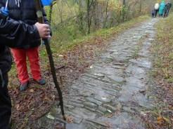 21 novembre, partenza da Bagno sotto la pioggia. Ma indomiti, i compagni di cammino non si fermano! E' l'antico percorso che da sempre i pellegrini calpestavano fino al passo Serra (1149 metri), e si conserva una bellissima pavimentazione.