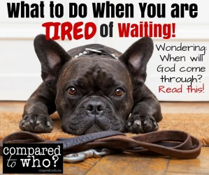 What to do when you are tired of waiting? How to wait on God.